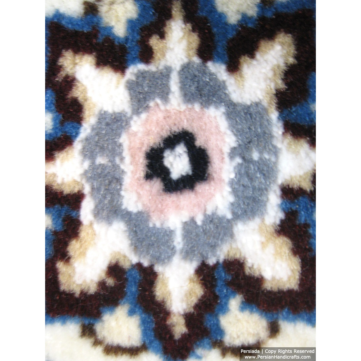 Medallion Design Wool & Cotton Naein Persian Rug  -  RN5000