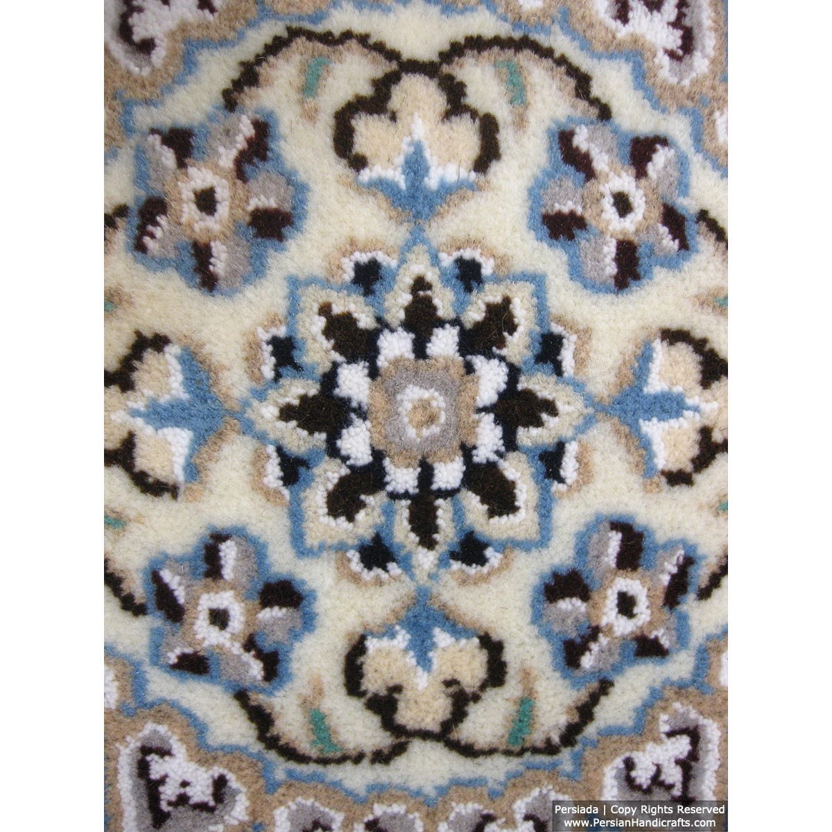 Medallion Design Wool & Cotton Naein Persian Rug  -  RN5006-Persian Handicrafts